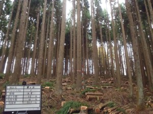 施工地:一関市狐禅寺字草ヶ沢