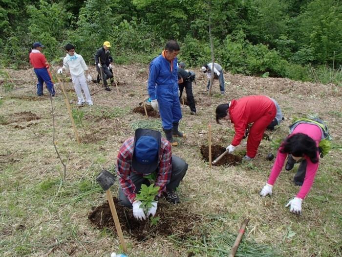 平成26年度 富士通 植樹